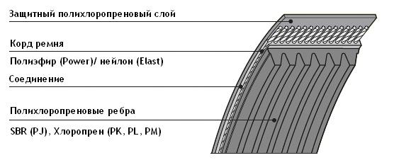 Ремень поликлиновой в разрезе